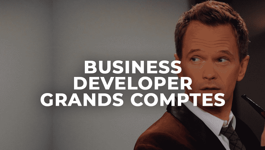 Business Developer Grands Comptes