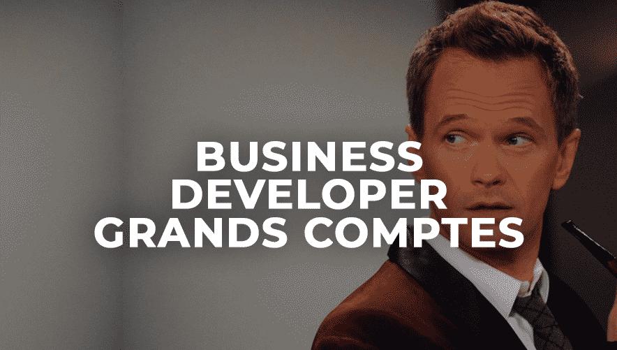 Business Developer Grands Comptes